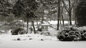 Japanese Garden b/w